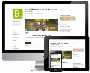 Création d'un blog pour une boutique en ligne [conceptb]