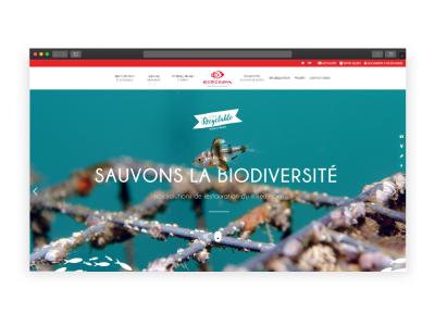 Refonte du site 'Ecocean'